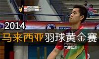 2014年马来西亚羽毛球黄金赛