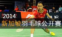 2014年新加坡羽毛球公开赛