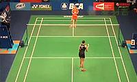 李雪芮VS加文霍尔特 2014印尼公开赛 女单1/16决赛视频