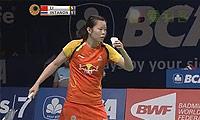 李雪芮VS因达农 2014印尼公开赛 女单决赛视频