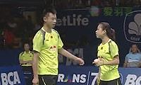 尼尔森/佩蒂森VS徐晨/马晋 2014印尼公开赛 混双决赛视频