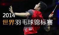 2014年世界羽毛球锦标赛