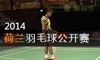 2014年荷兰羽毛球公开赛