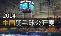 2014年中国羽毛球公开赛