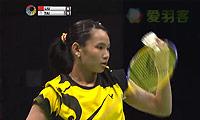 戴资颖VS刘鑫 2014香港公开赛 女单半决赛视频