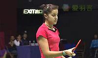 奥原希望VS马琳 2014香港公开赛 女单半决赛视频
