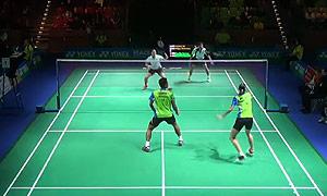 陈润龙/谢影雪VS苏巴蒂亚/维德佳佳 2015德国公开赛 混双1/8决赛视频